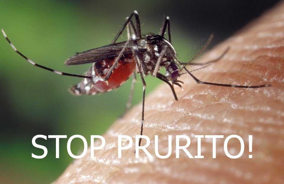 Curare una puntura di zanzara